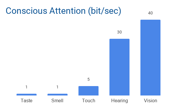 Image Of Senses Throughput For Conscious Attention